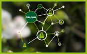 Dalival---NOS-partenaires