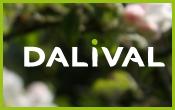 Dalival---dalival