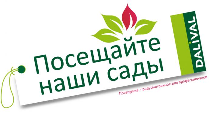 Dalival---visite-de-vergers---réservée-aux-professionnels-russe