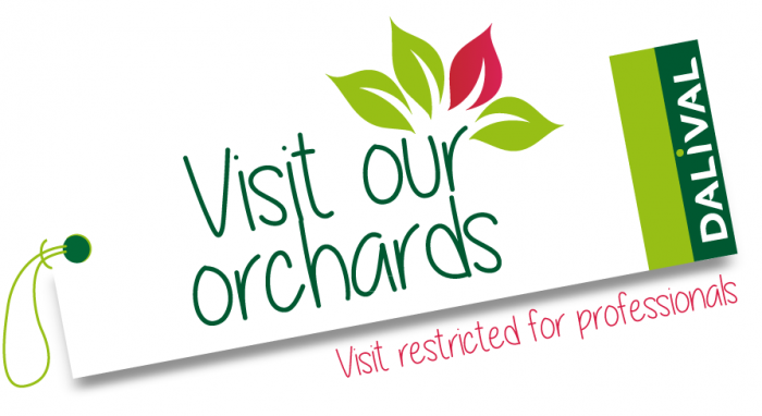 Dalival---visite-verger-visit-orchards-ANG-for-professionals