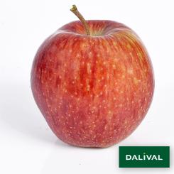 Apfel-Apfelbaum-Dalival-CAMEO-CAUDLE