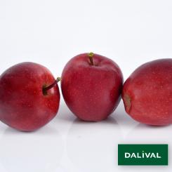 Apfel-Apfelbaum-Dalival-BUCKEYE-GALA-SIMMONS