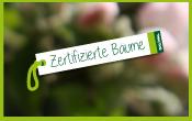 dalival---plants-certifiés-Zertifizierte,-jährige-Bäume-allemand-Deutsch-vignette-menu