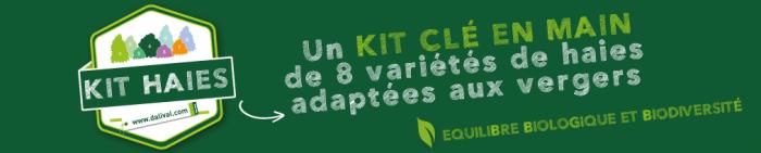 Encart-promo-web-Kit-Haies-Dalival