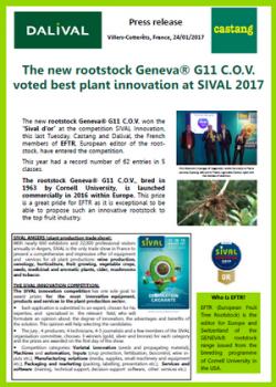 CP G11 GB