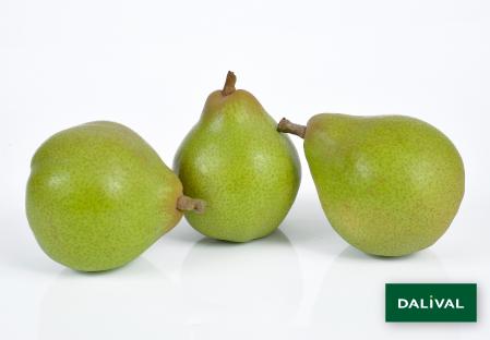 Birnensorten - Dalival - Doyenné du Comice