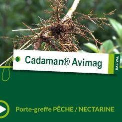 Cadaman® Avimag_FR