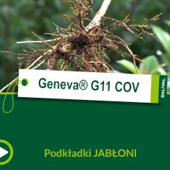Geneva® G11 C.O_POL