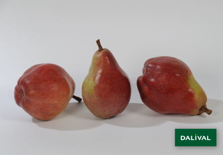 Pears - Dalival - Williams rouge Homored C.O.V