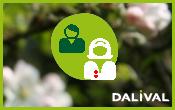 Dalival - Stone fruit team in Montélimar