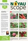 Noyauscope 2