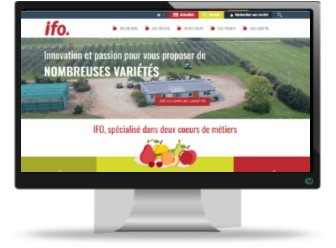 Site IFO